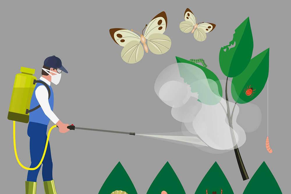diệt côn trùng tại đà nẵng
